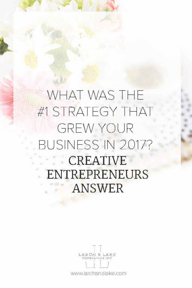 For the last couple of weeks I have been asking entrepreneurs what the #1 strategy they used to grow their business in 2017 was, basically  the thing  that grew their business the most. These are the results!
