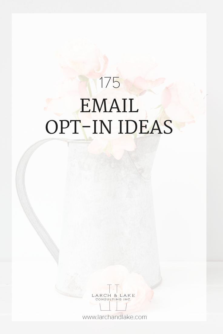 Specific ideas for email opt-ins for photographers, wedding professionals, designers, shop owners, interior designers, bloggers and business coaches.