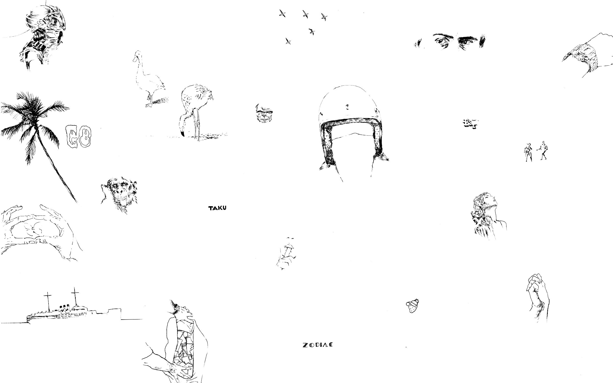 "Skull Tambourine   ink on paper  30 x 44 """