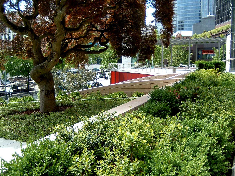 GGN Seattle City Hall terrace.jpg