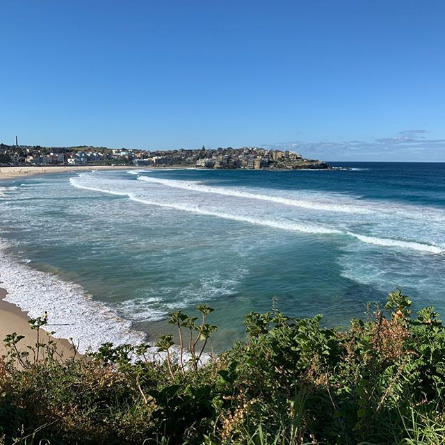 Made quick work of getting to the beach within a few days of arriving in Sydney. It's autumn here now, but you'd never know from the sunshine and these gorgeous views. And it's always a good day with @clairecbi no matter where we are in the world. 💙 #australia #sydney #everydayisabeachday #twothirdsofthetrifecta