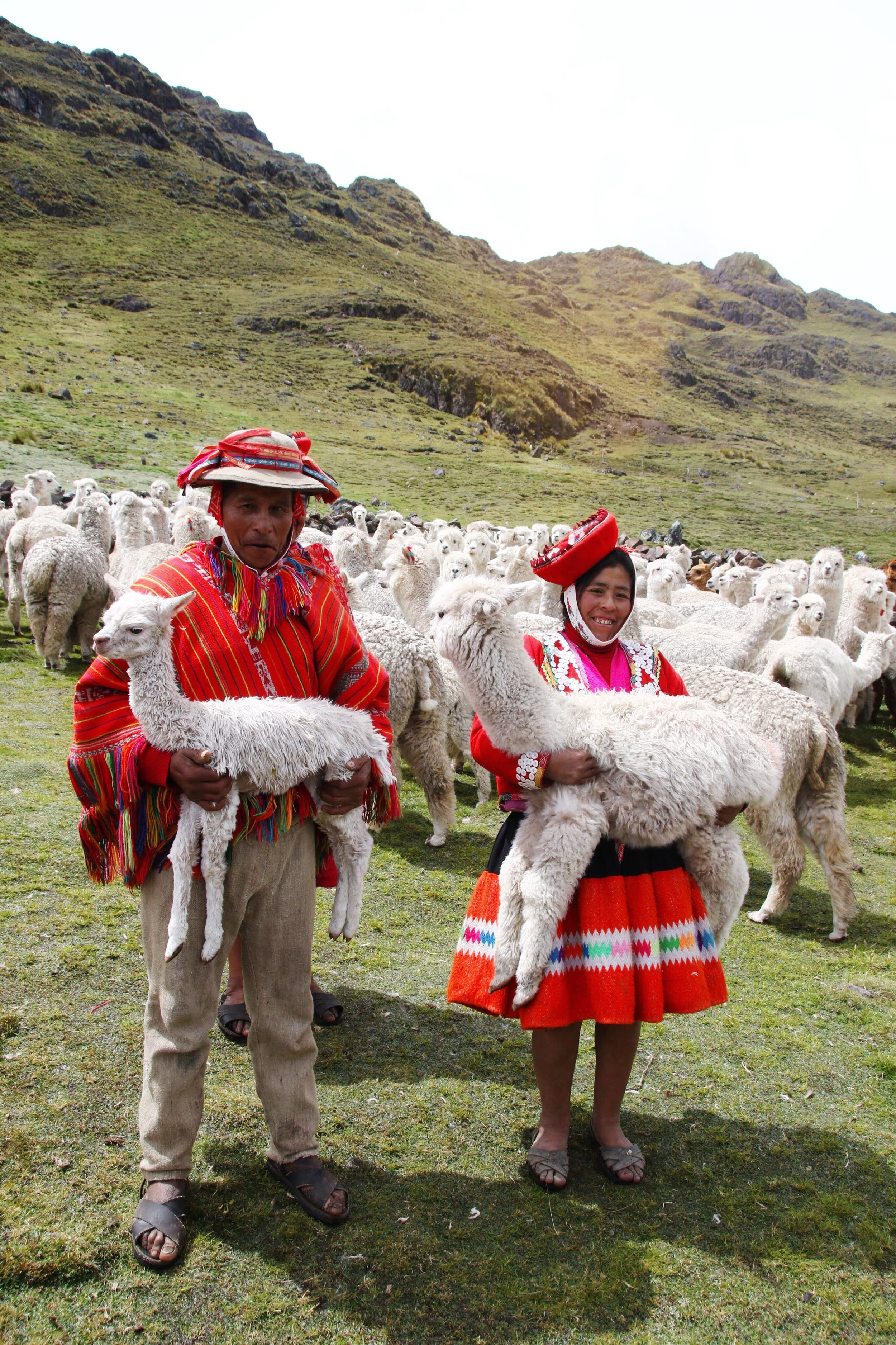 Peru_Tours_llama_blessing_ceremony3