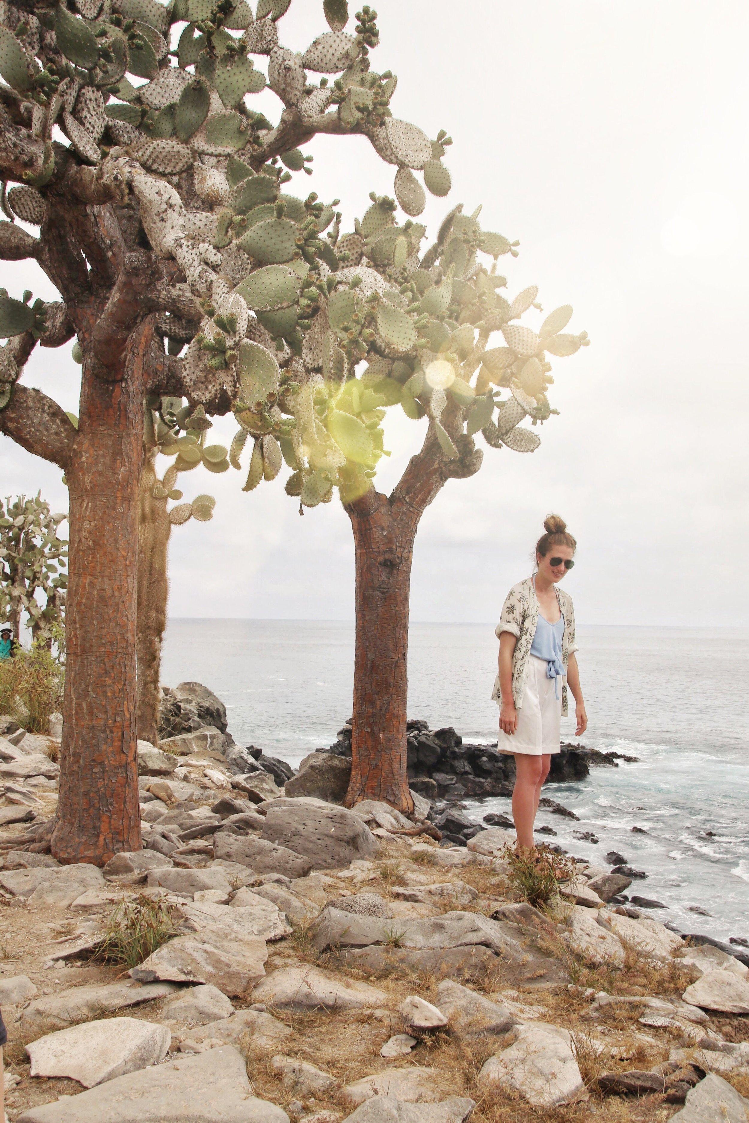 Galapagos_Land_Tours_Baltra.jpg