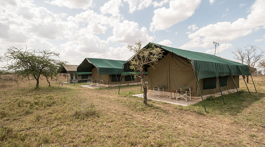 Our Tented Safari Camps | Kati Kati & Serengeti Wild
