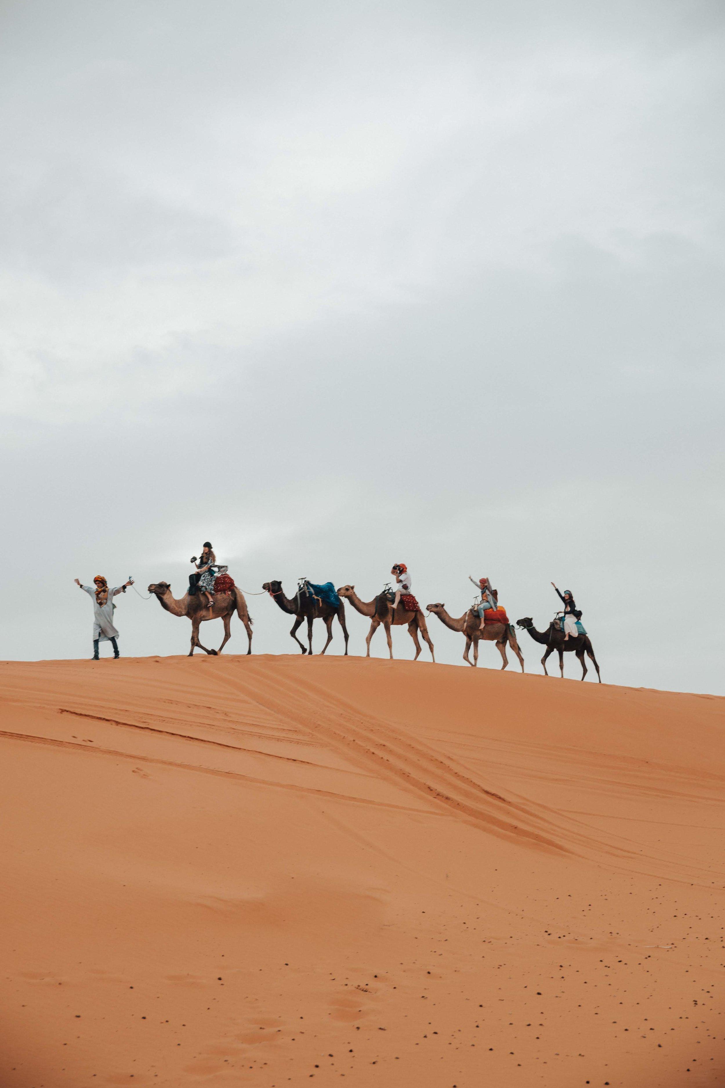 Day 4 sahara ride-72.jpg
