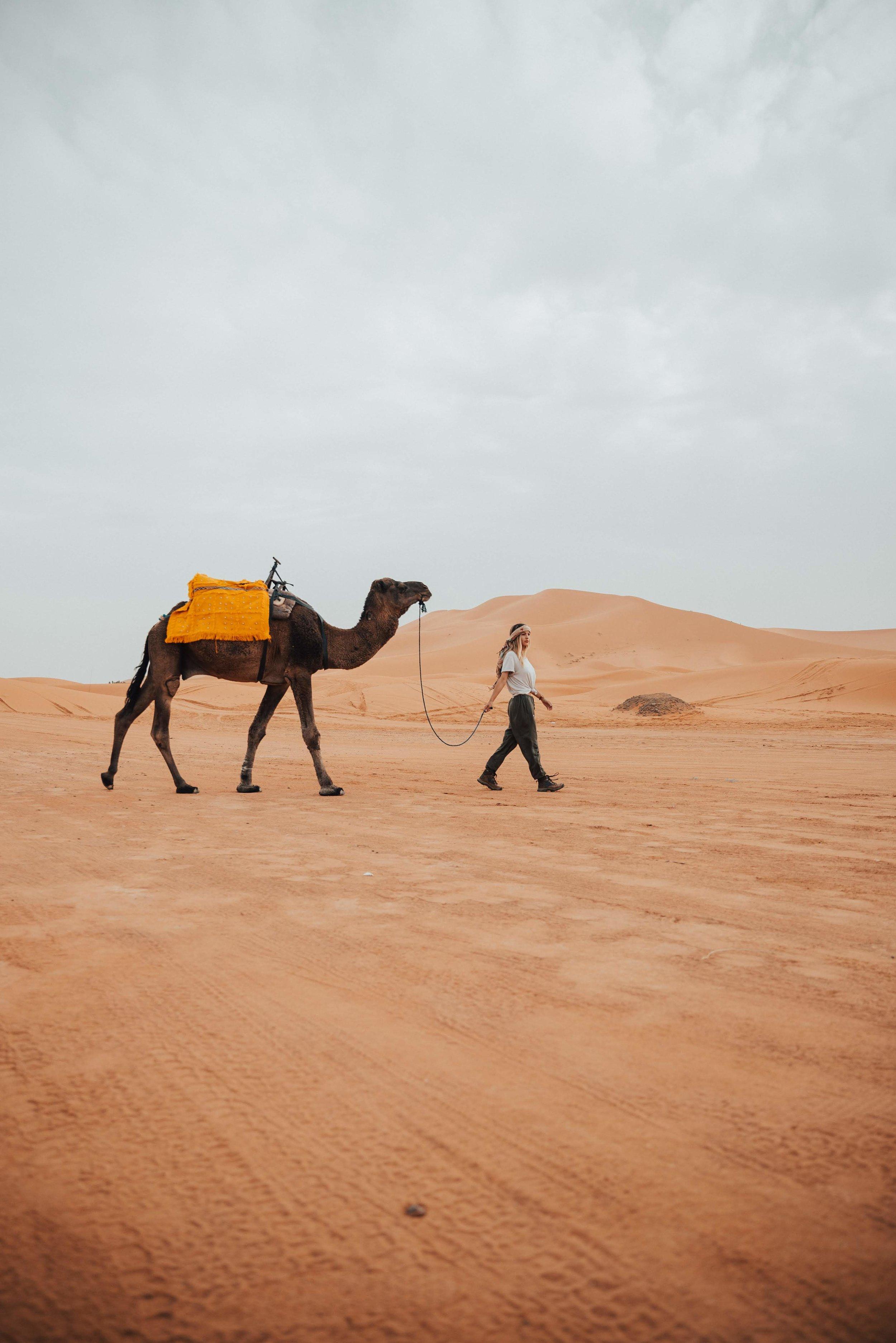 Day 4 sahara ride-34.jpg