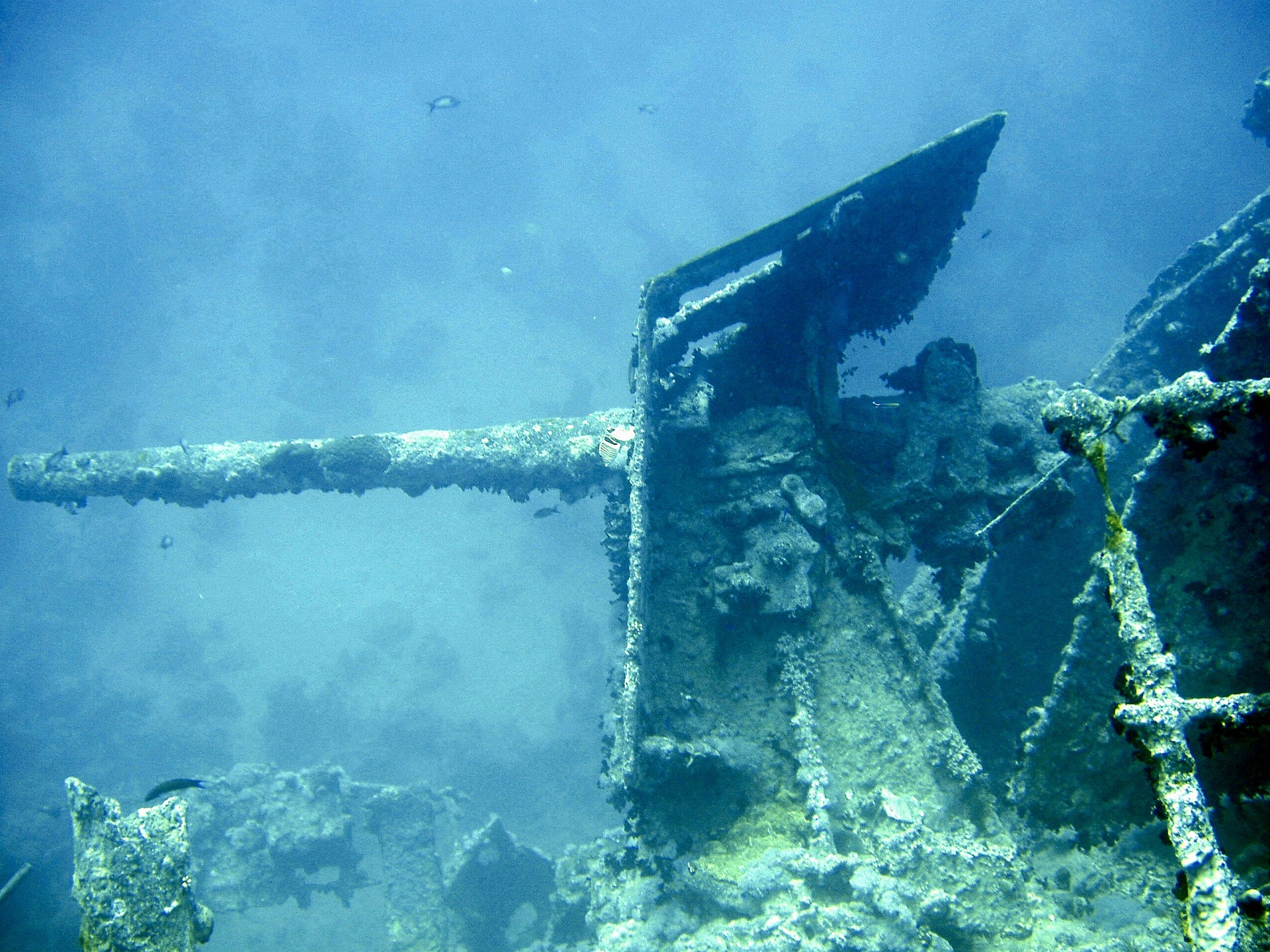 underwater-712631_1920.jpg