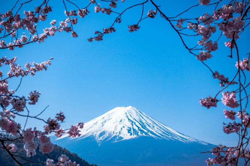 marketing-tips-hosting-trips-workshops-japan.jpg