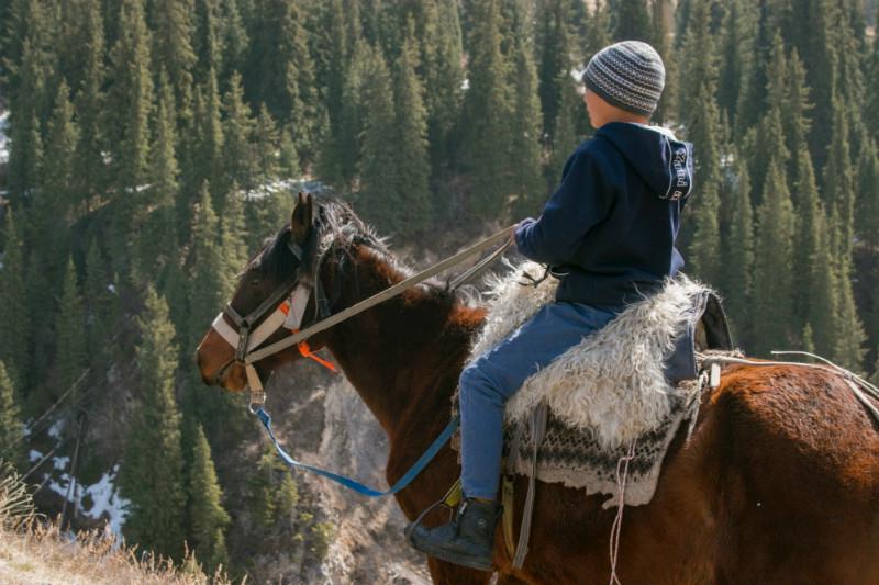 five-things-kazakhstan-horses.jpg