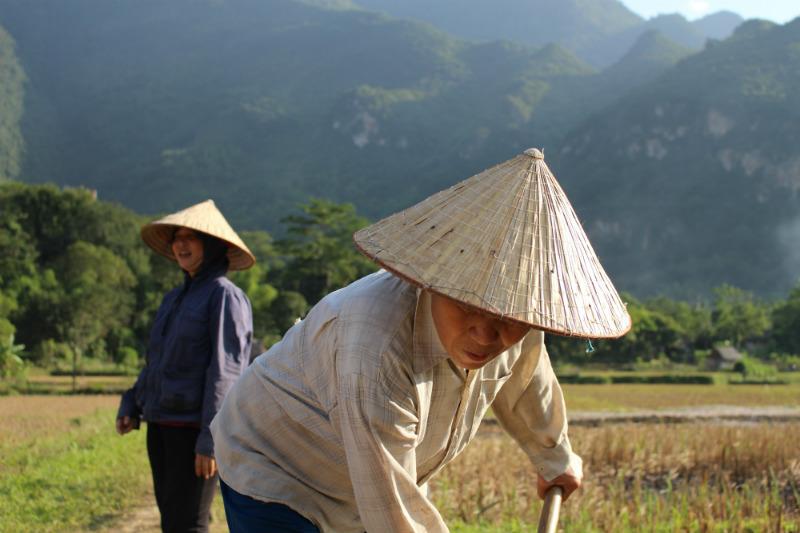 vietnam-cultural-adventure-straw-hats.jpg