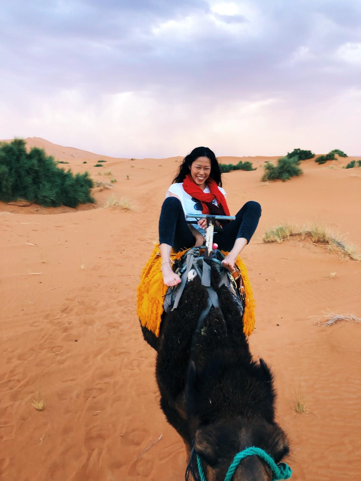 traveler-review-morocco-vacation-haley-camel-sahara.jpg