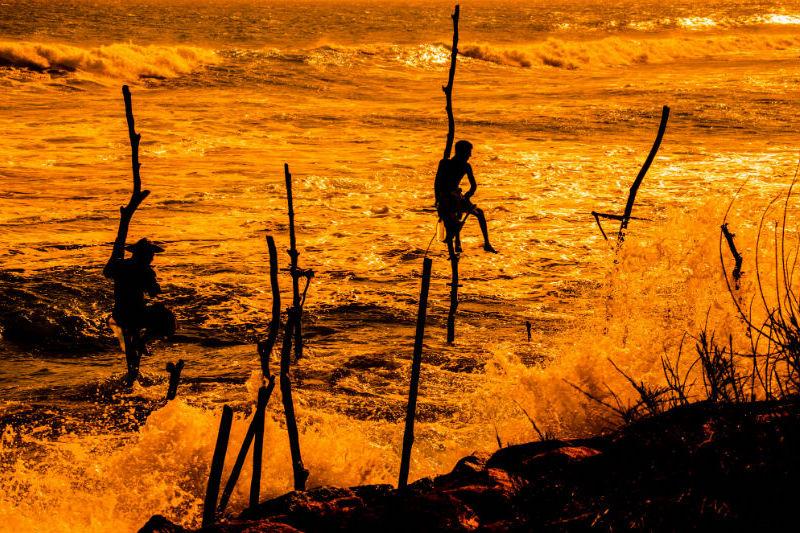sri-lanka-expedition-stilt-fishing.jpg