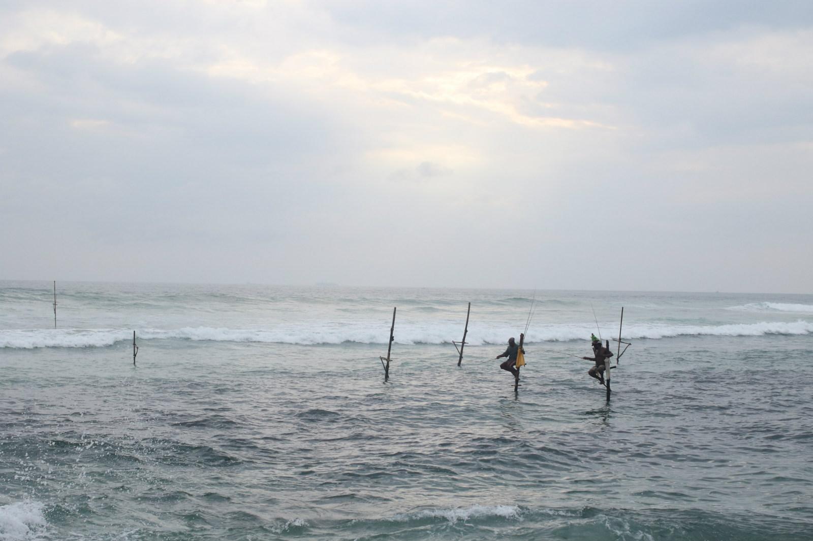 sri-lanka-expedition-stilt-fishing-koggola.jpg