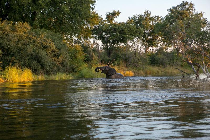 victoria-falls-adventure-zambezi-national-park.jpg