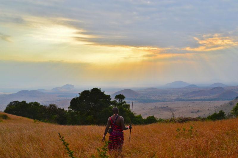 serengeti-wildlife-and-wonders-masai-mara.jpg