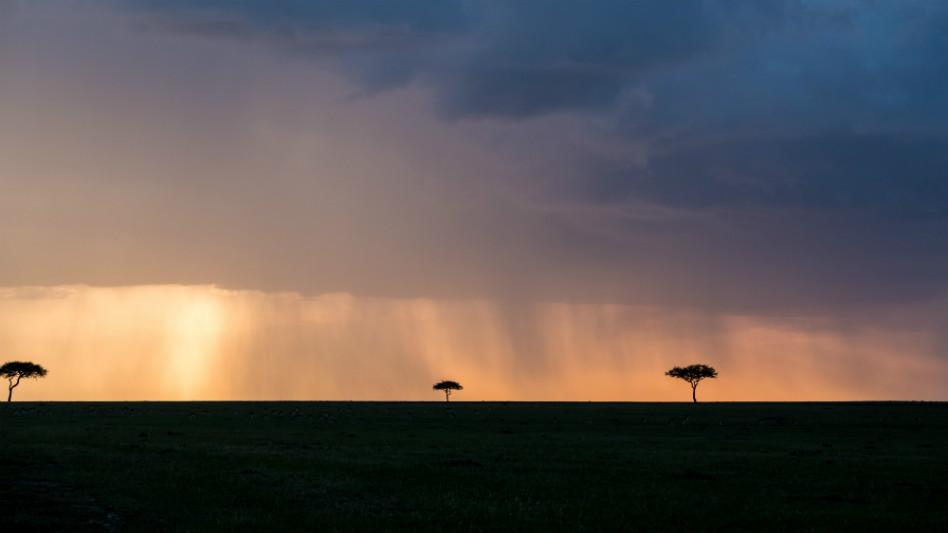 serengeti-wildlife-and-wonders-rain.jpg