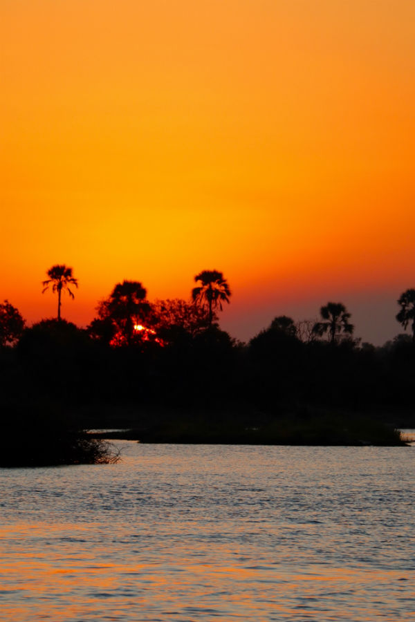 traveler-review-african-safari-botswana-sunset.jpg