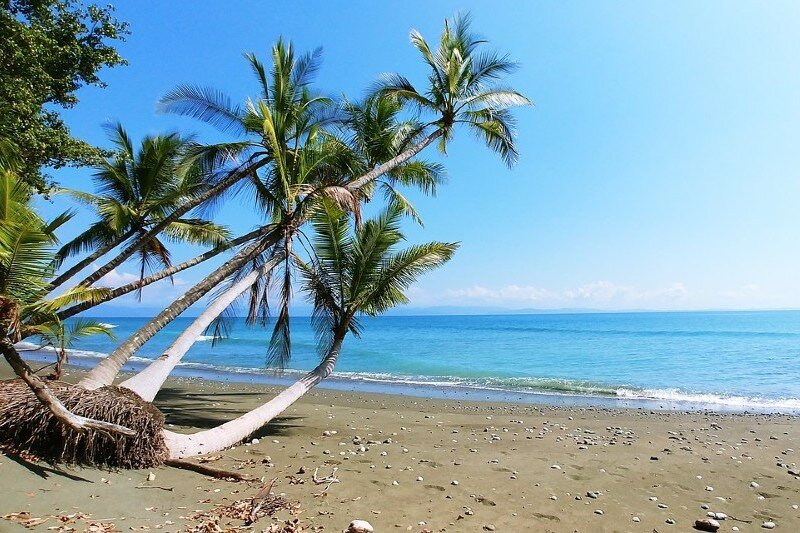 best-time-to-visit-costa-rica-january-february.jpg