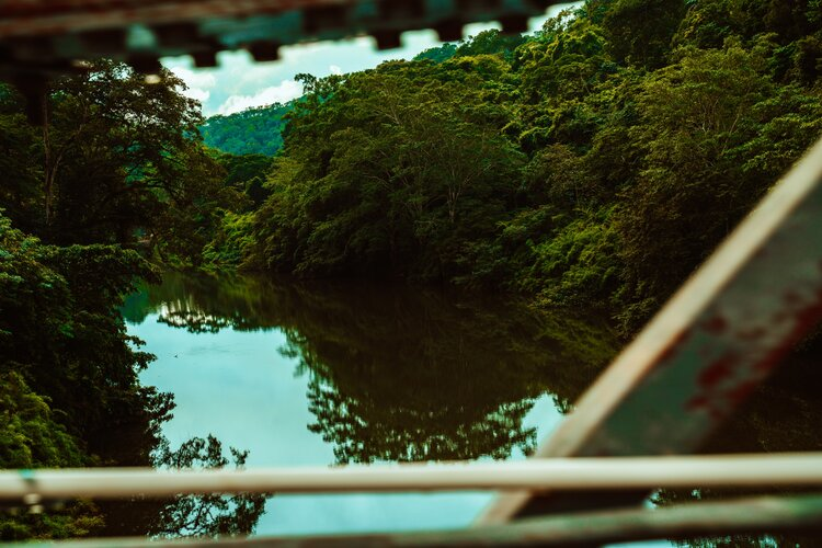Why You NEED to Visit the Peruvian Amazon