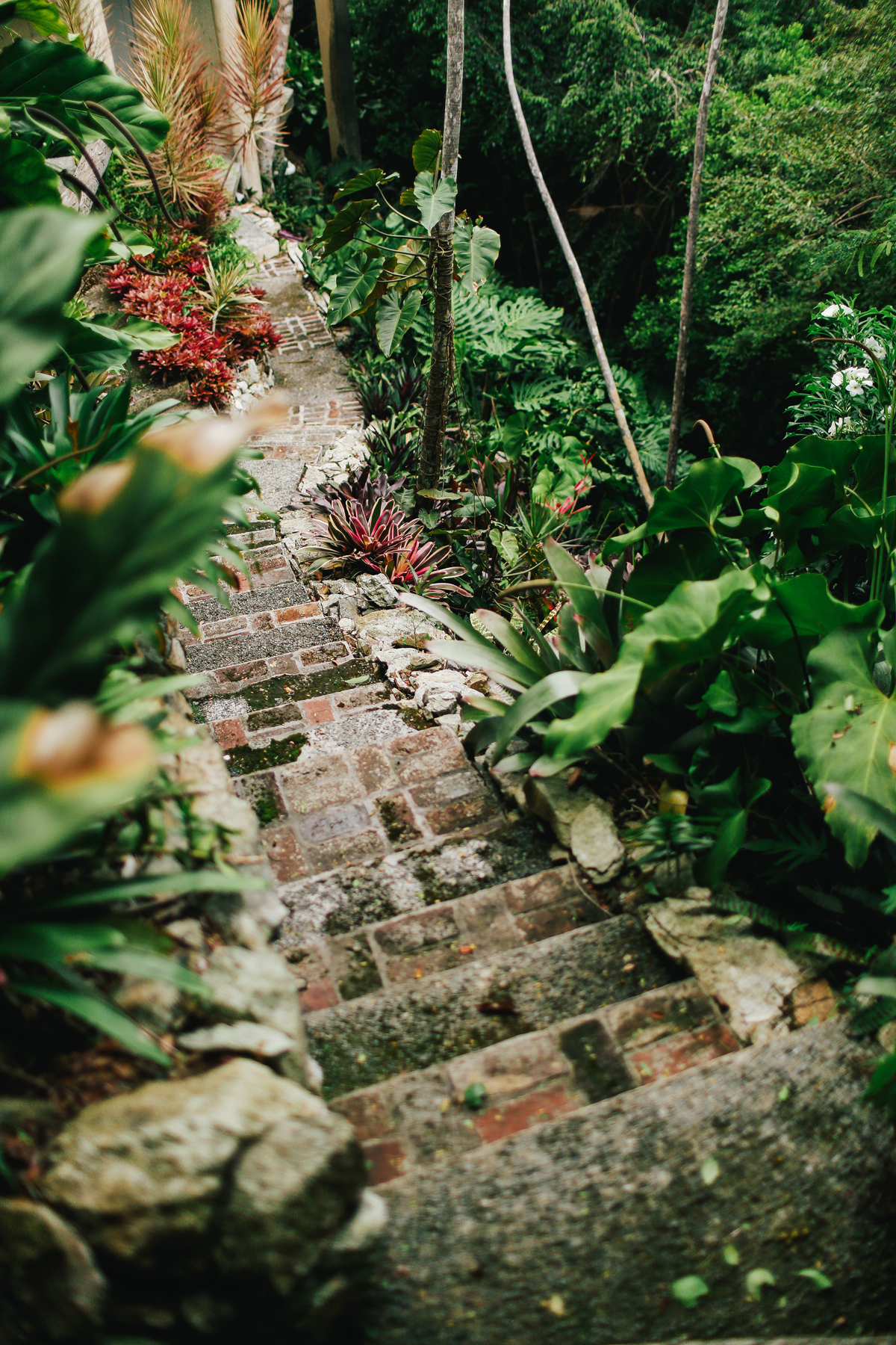 drakesview_garden00.jpg