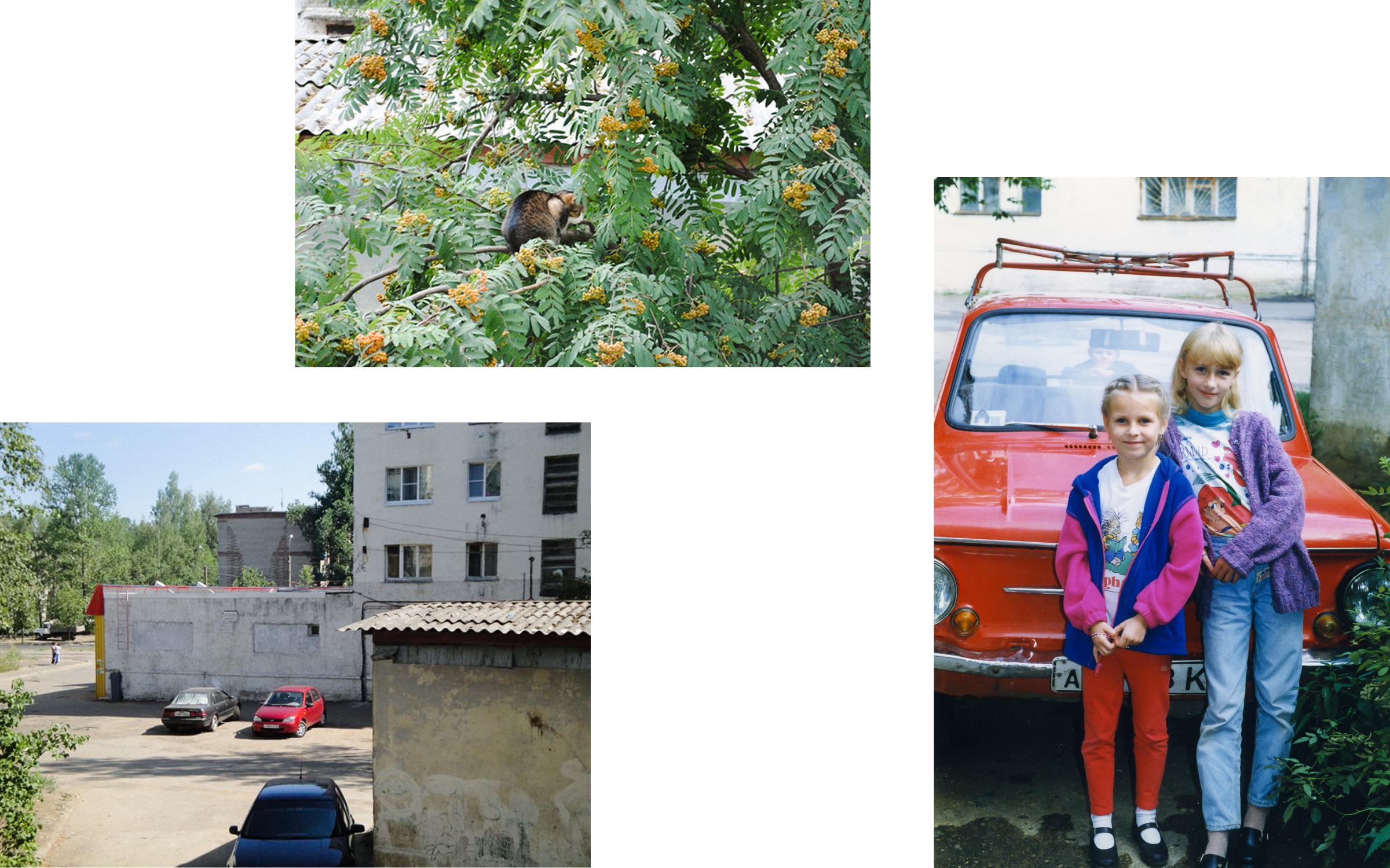 Kovtun_002_Russia_Cats_Photo_Book.jpg