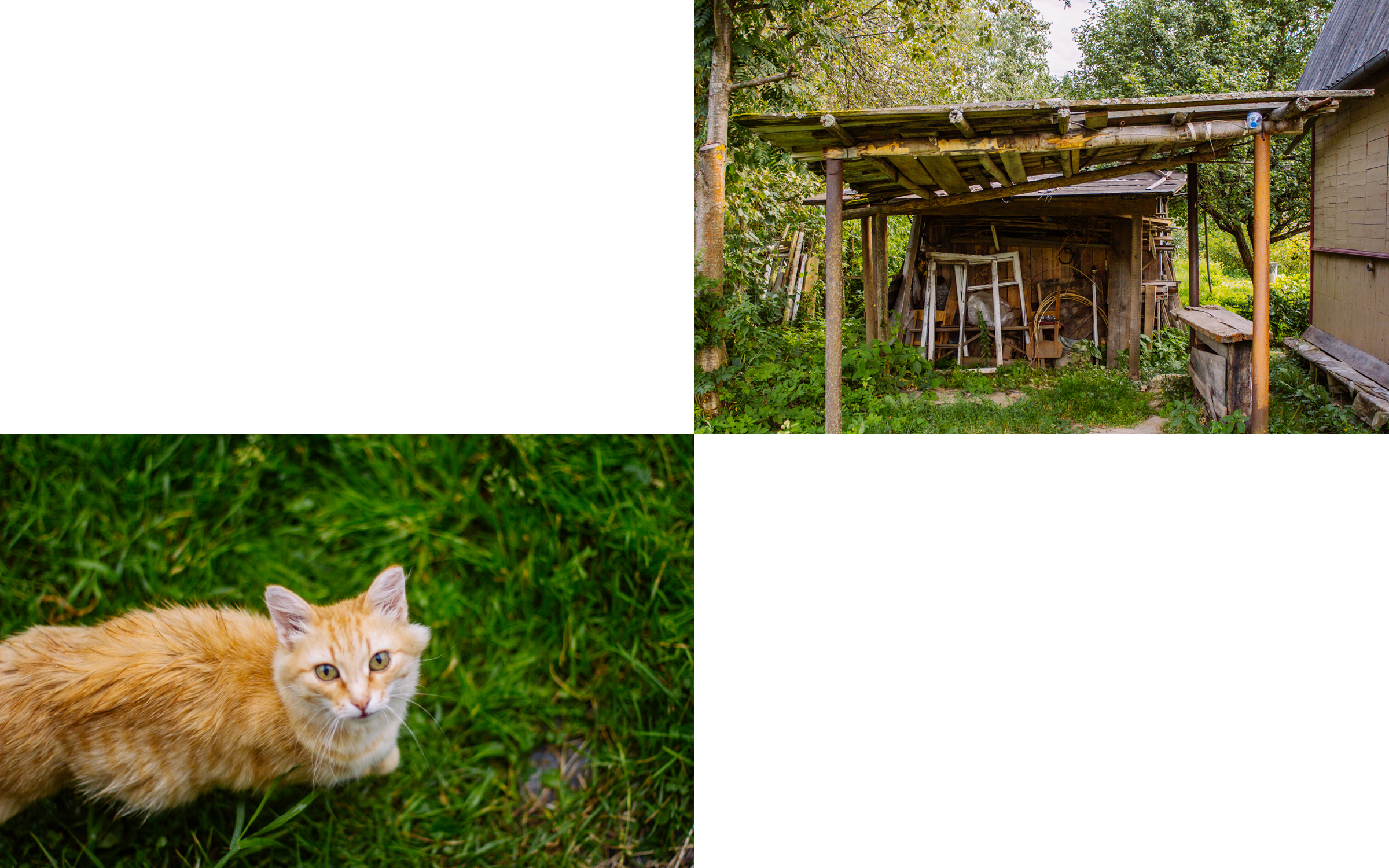 Kovtun_013_Russia_Photo_Book.jpg