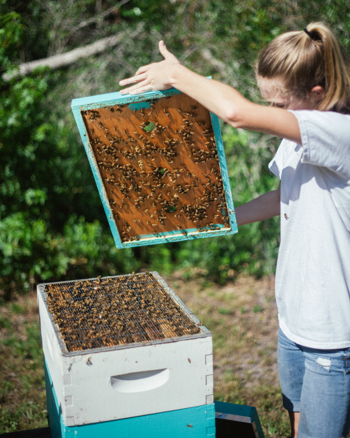 "Rylee has been keeping bees since she was five.   ""When my dad's dad was little, he did bees, so they were just always around. My dad showed me through it all, and I kept with it. He's still involved and every now and then my brother will help."""