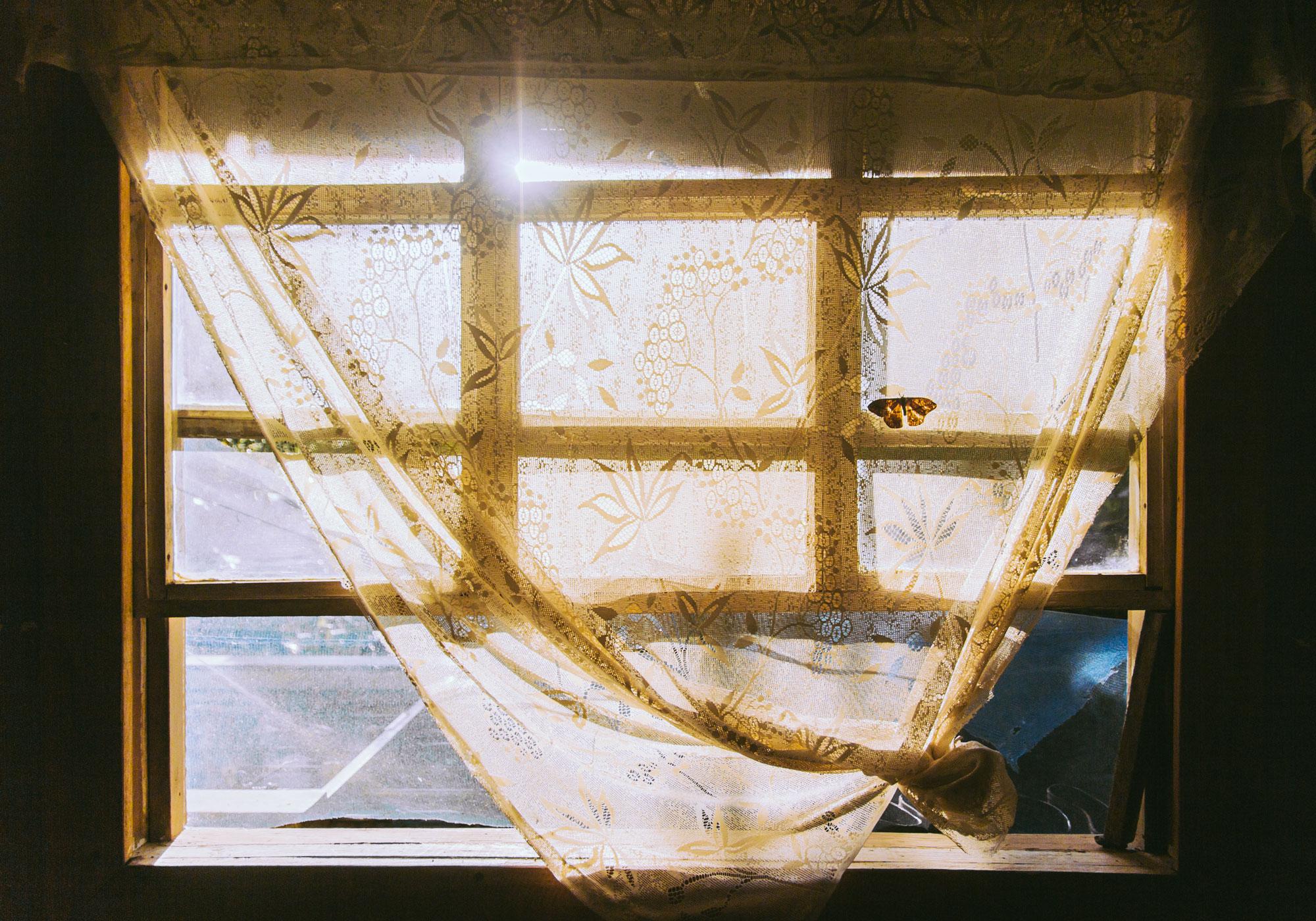 Mastatal-Window.jpg