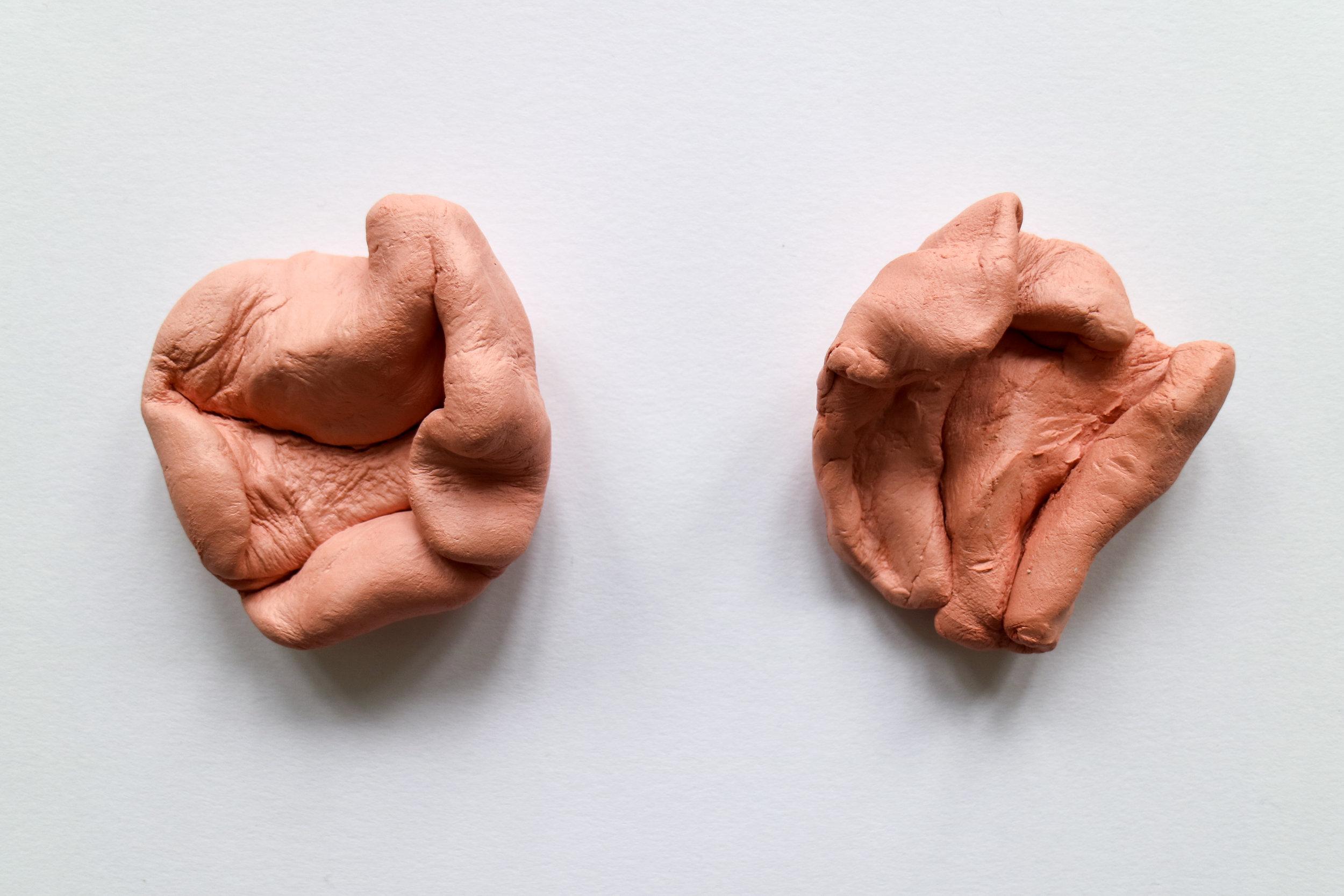 Muscle I-6.jpg