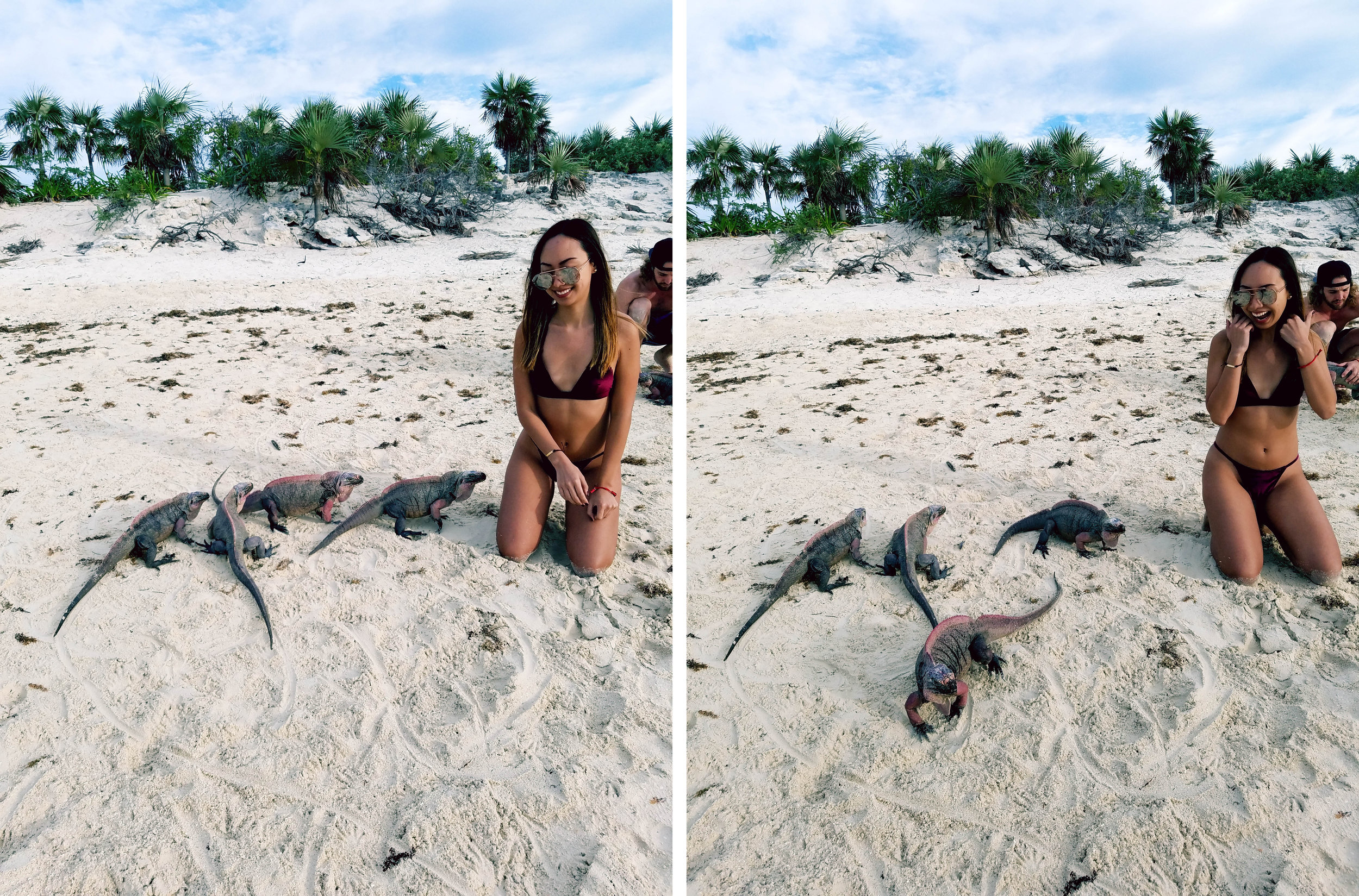 Our last stop was this iguana island! Again, I was pretty terrified because they have claws and can climb up on you. However, they were actually really cute and chill. You can feed them grapes by rolling them on the sand...they all run like crazy and fight for them. Each time I kneeled down, they would get SUPER close to me, so in all my shots you can see the fear in my face 😂.