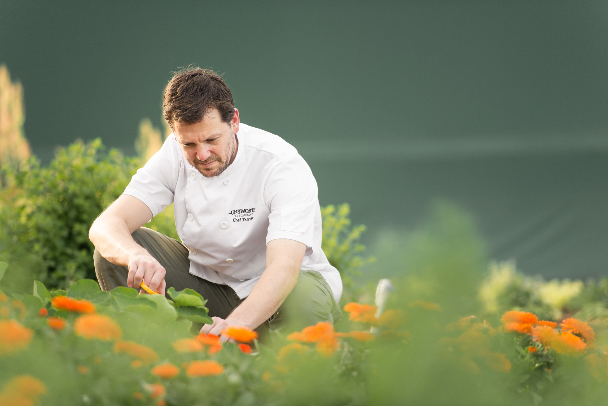 Chef Steve Elskins at Unsworth Restaurant