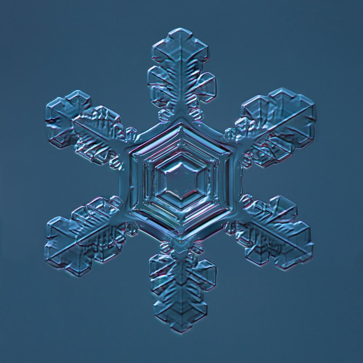 Snowflake 2015.01.02.003