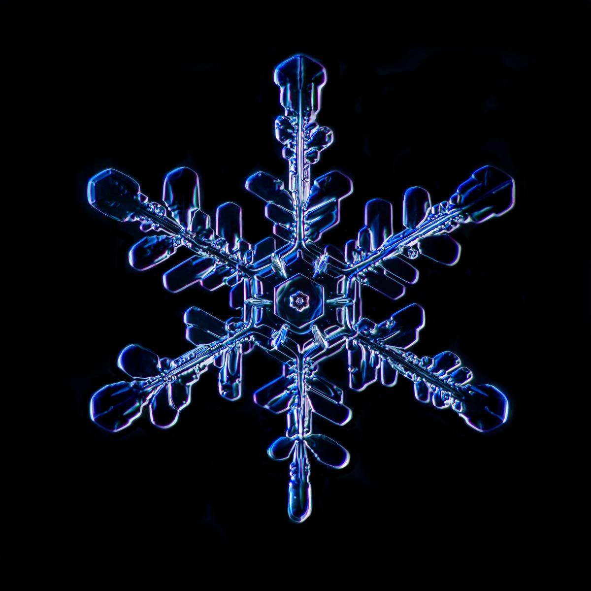 Snowflake 2015.02.02.002