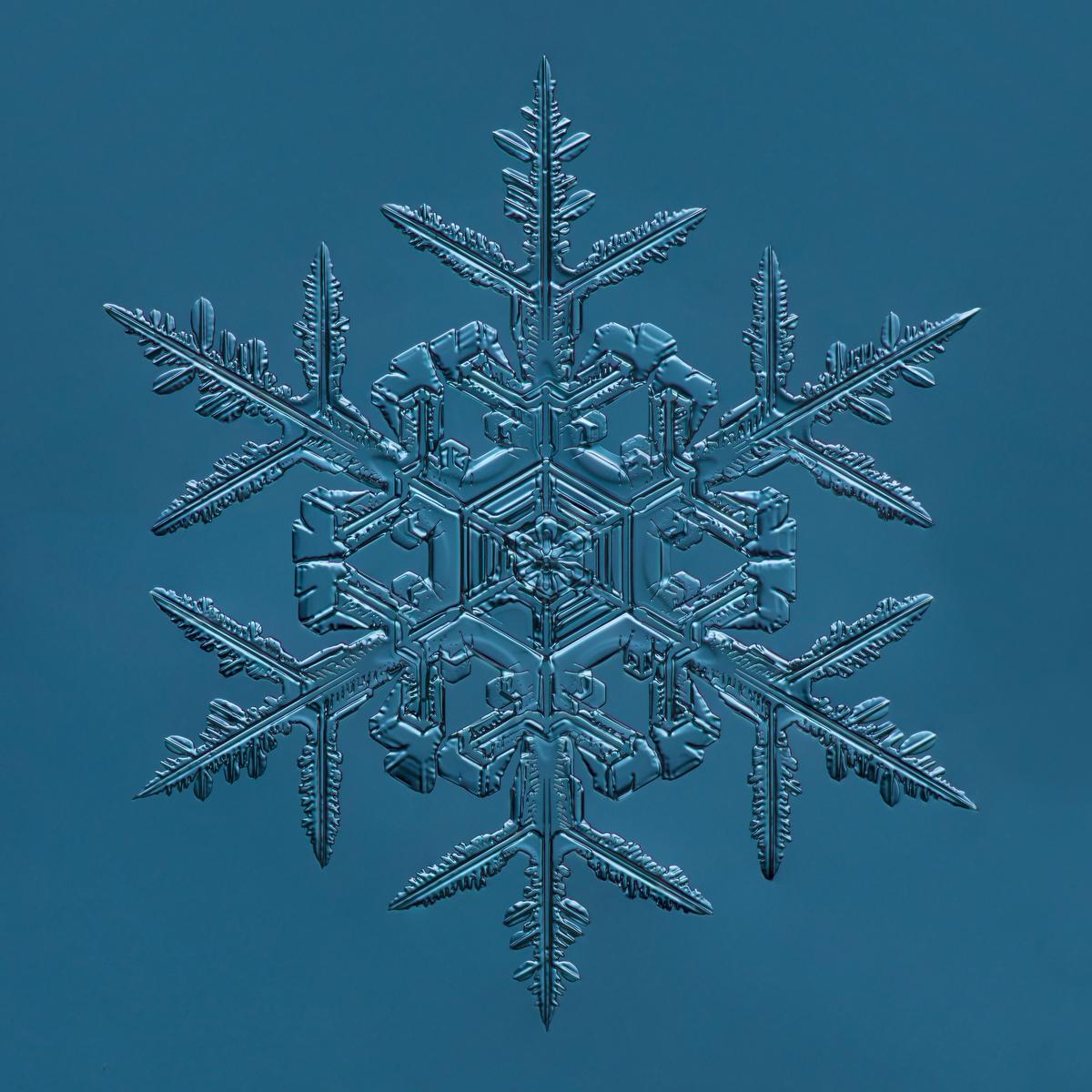 Snowflake 2015.02.02.008