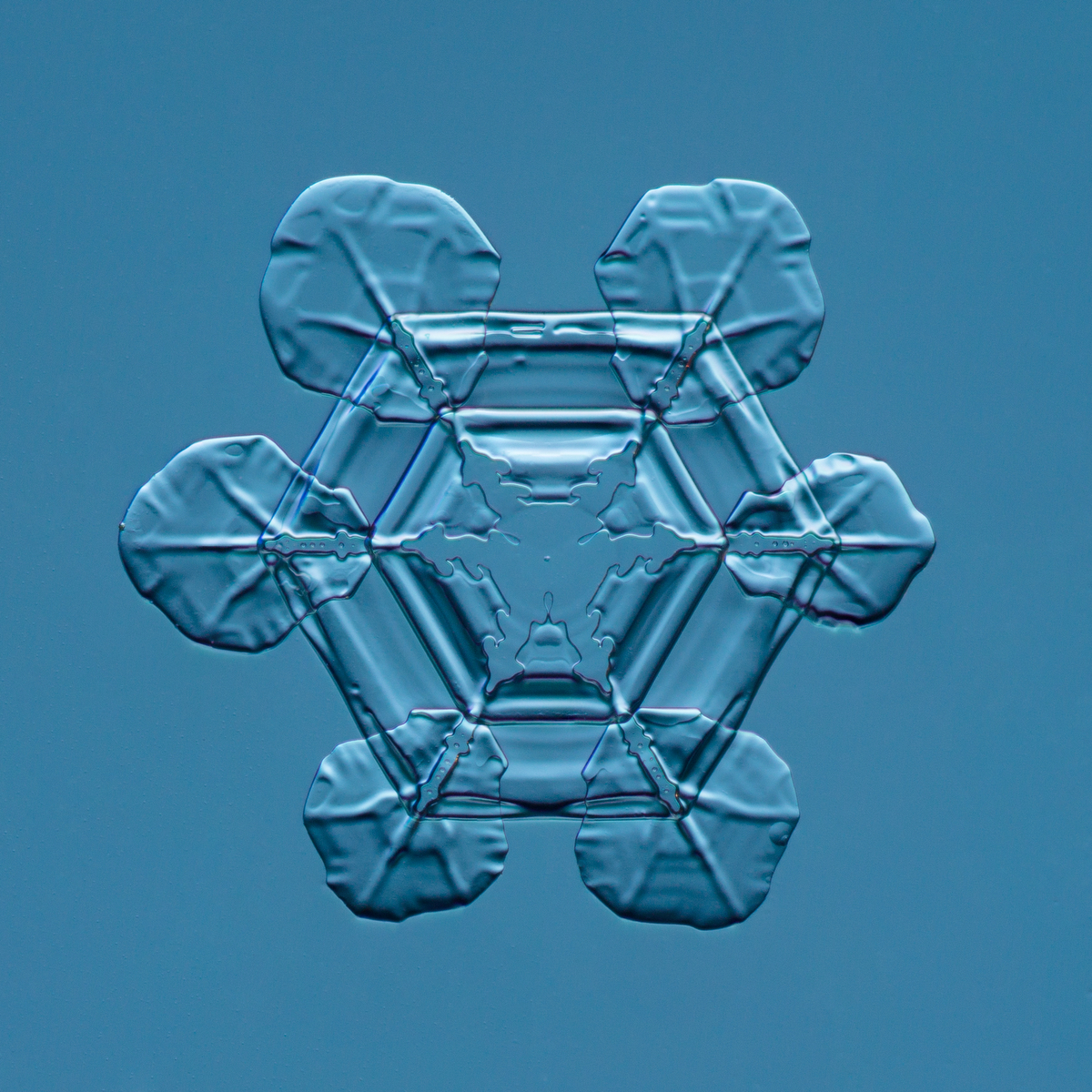 Snowflake 2015.02.25.007