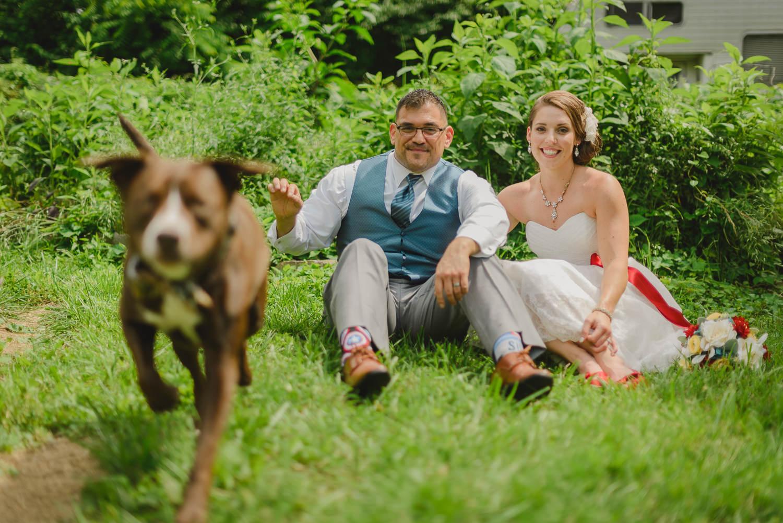 fotografo de bodas mexico oldie dog wedding photographer