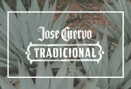 Jose_ReturnBoard_12.jpg