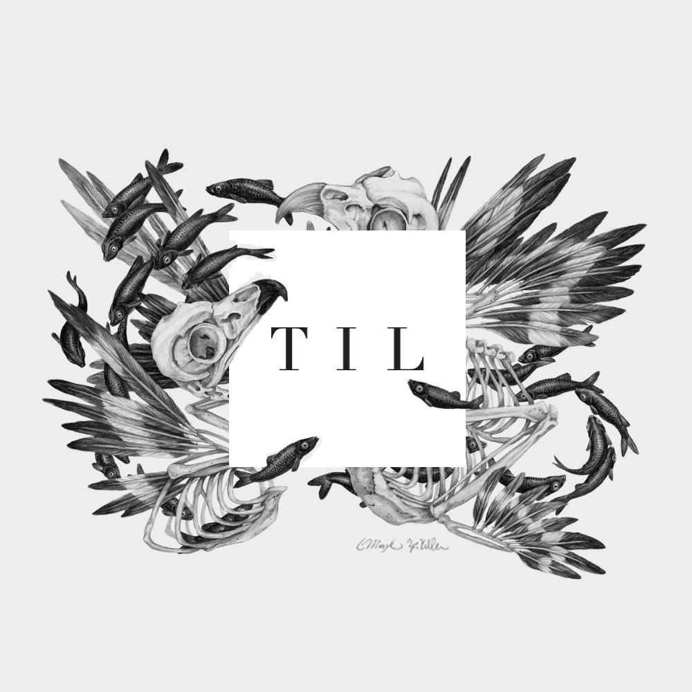 TIL_8.jpg