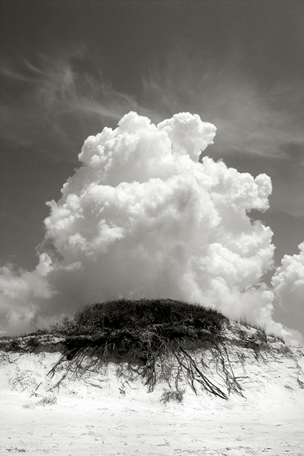 Richard Sexton, Ascension, Quadtone pigment print