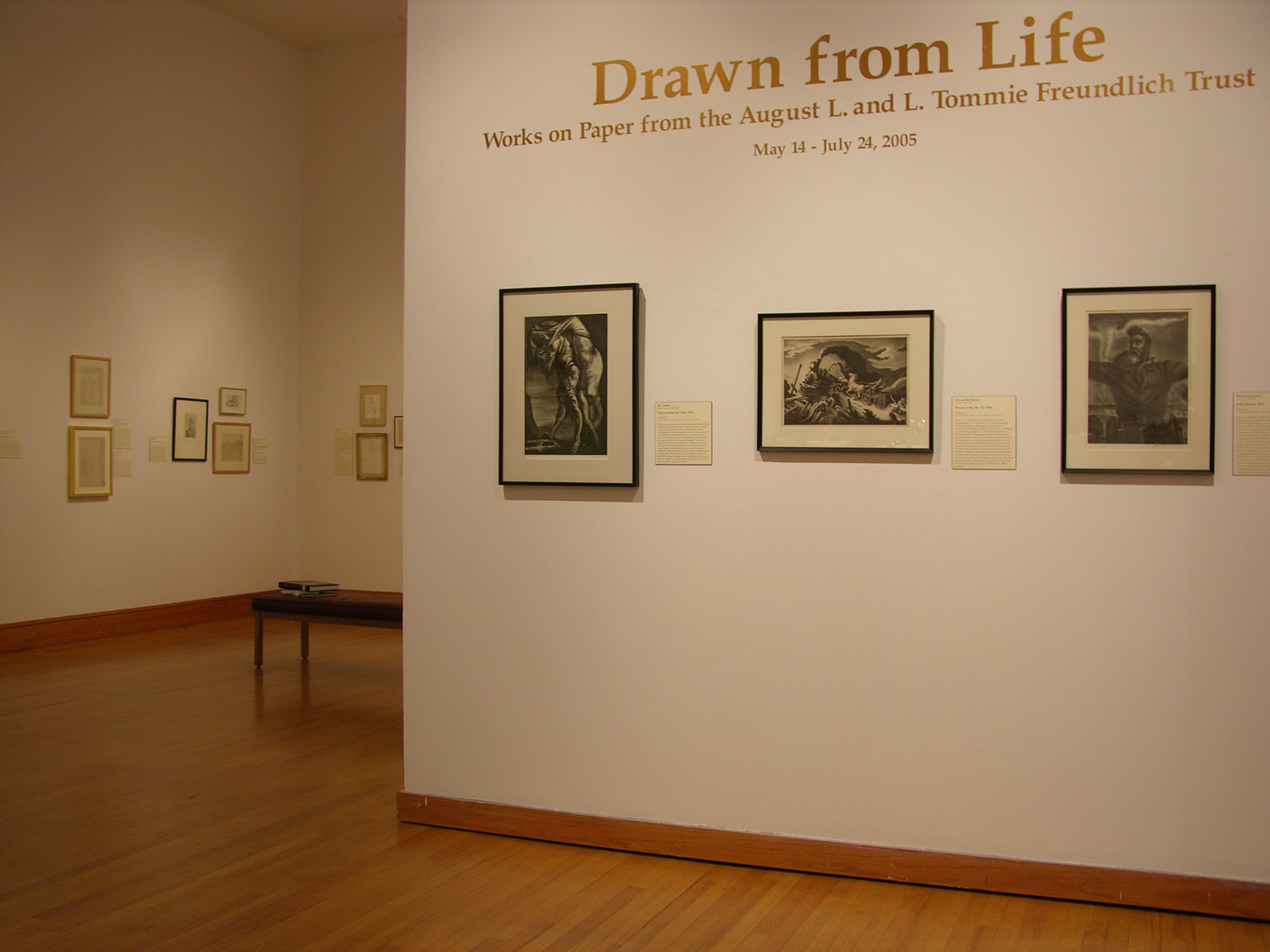 Drawn From Life: Works on Paper From the Freundlich Collection,  2005.