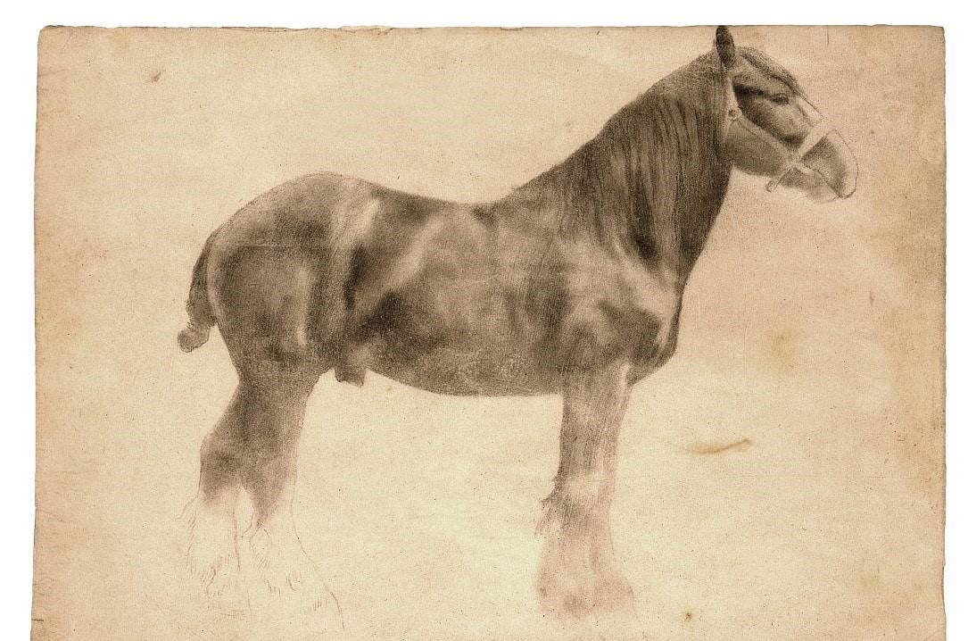 Edgar Degas,  Plough Horse