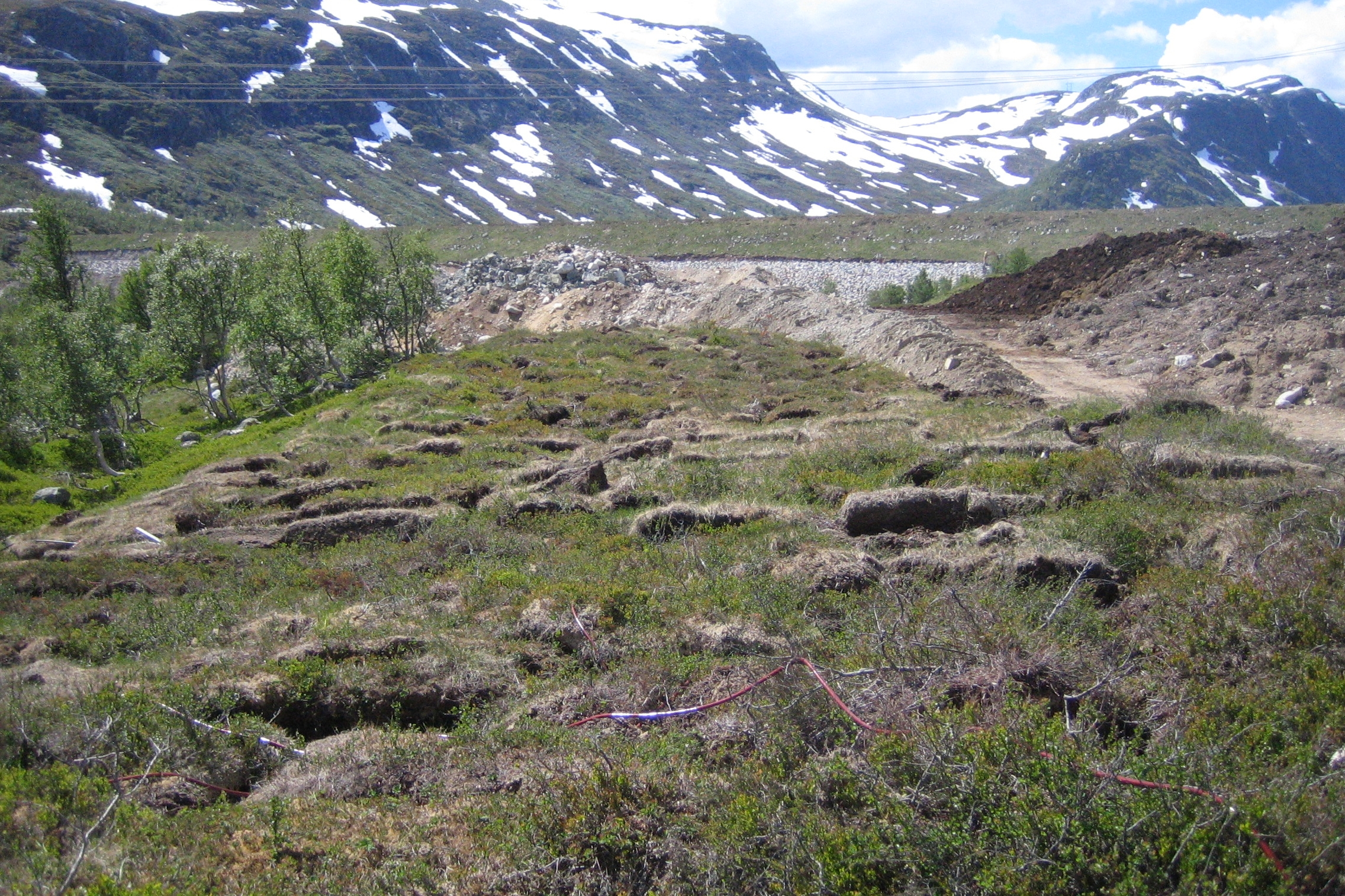 Dam Bitdalen - naturleg revegetering har vore eit overordna prinsipp for istandsetting av landskapet. Her ser vi mellomlagra vegetasjonstorver i framgrunnen. Den grøne damfronten i bakgrunnen