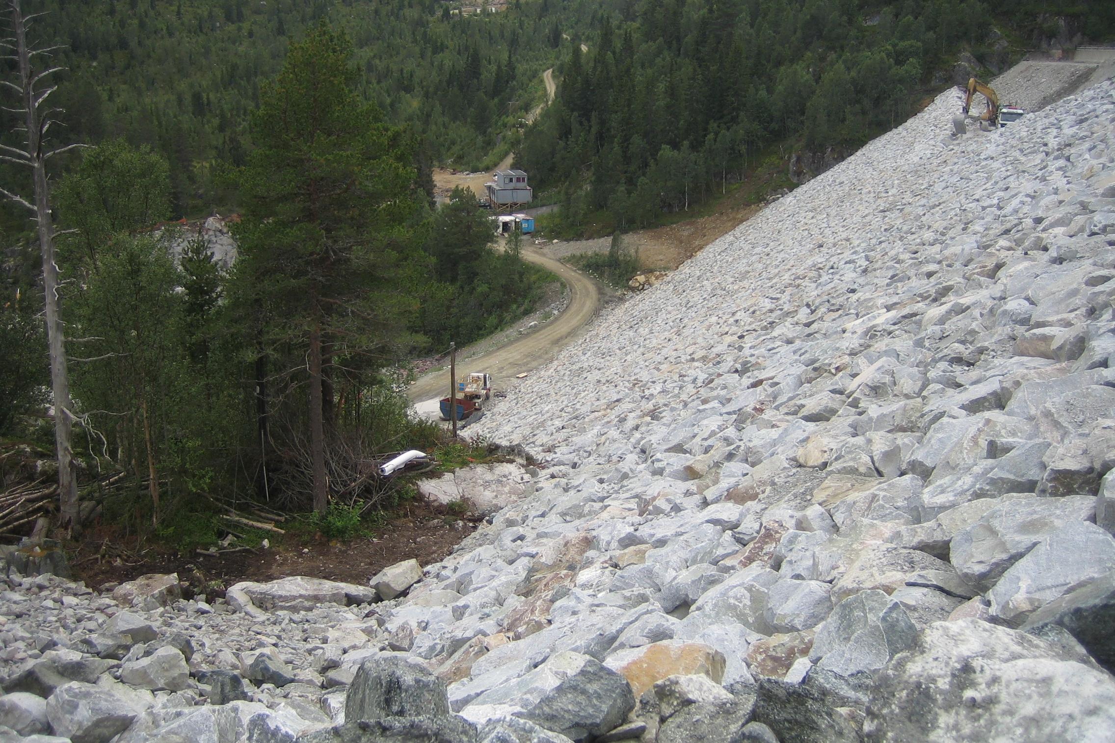 Dam Venemo - overgang mellom plastra damside og naturleg sideterreng skal vera presis