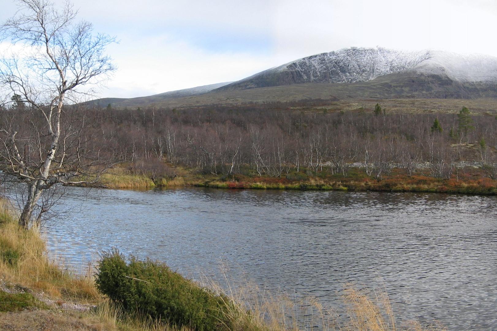 Landskapsrom rundt Øversjøen i Misterdalen.