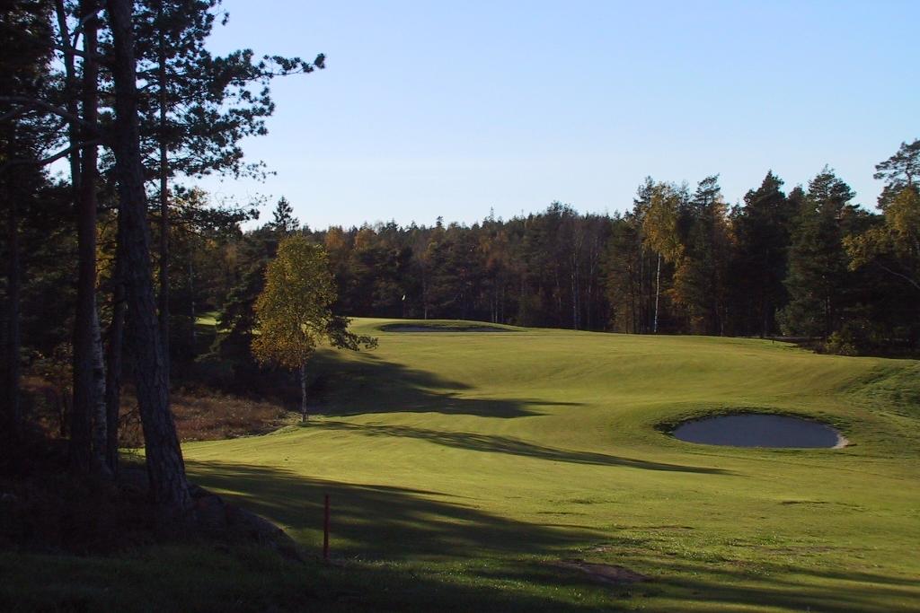 Nytt terreng er formet som åpne sletter i skogen