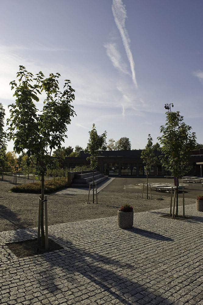 Trær i grus, asfaltflater kanta med avrunda gatesteinfelt Foto: Dag Jenssen
