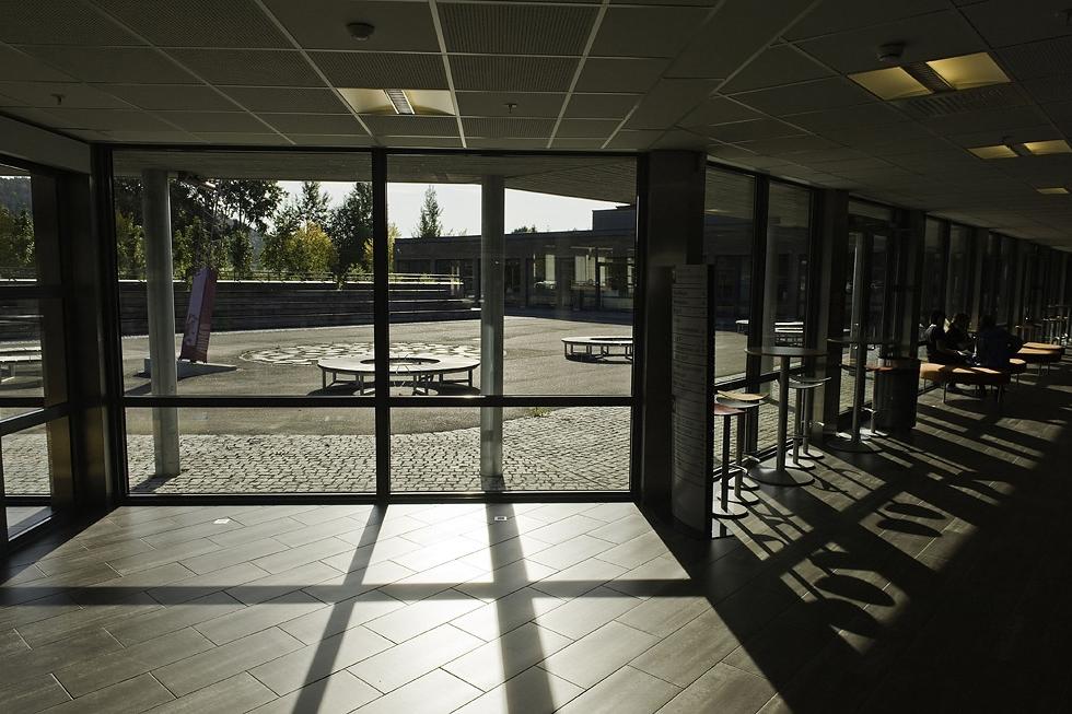 Utsikt fra kantina (Foto: Dag Jenssen)