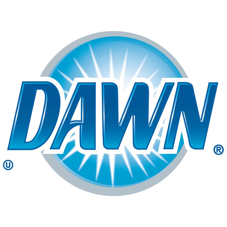 Dawn_logo_2010.jpg