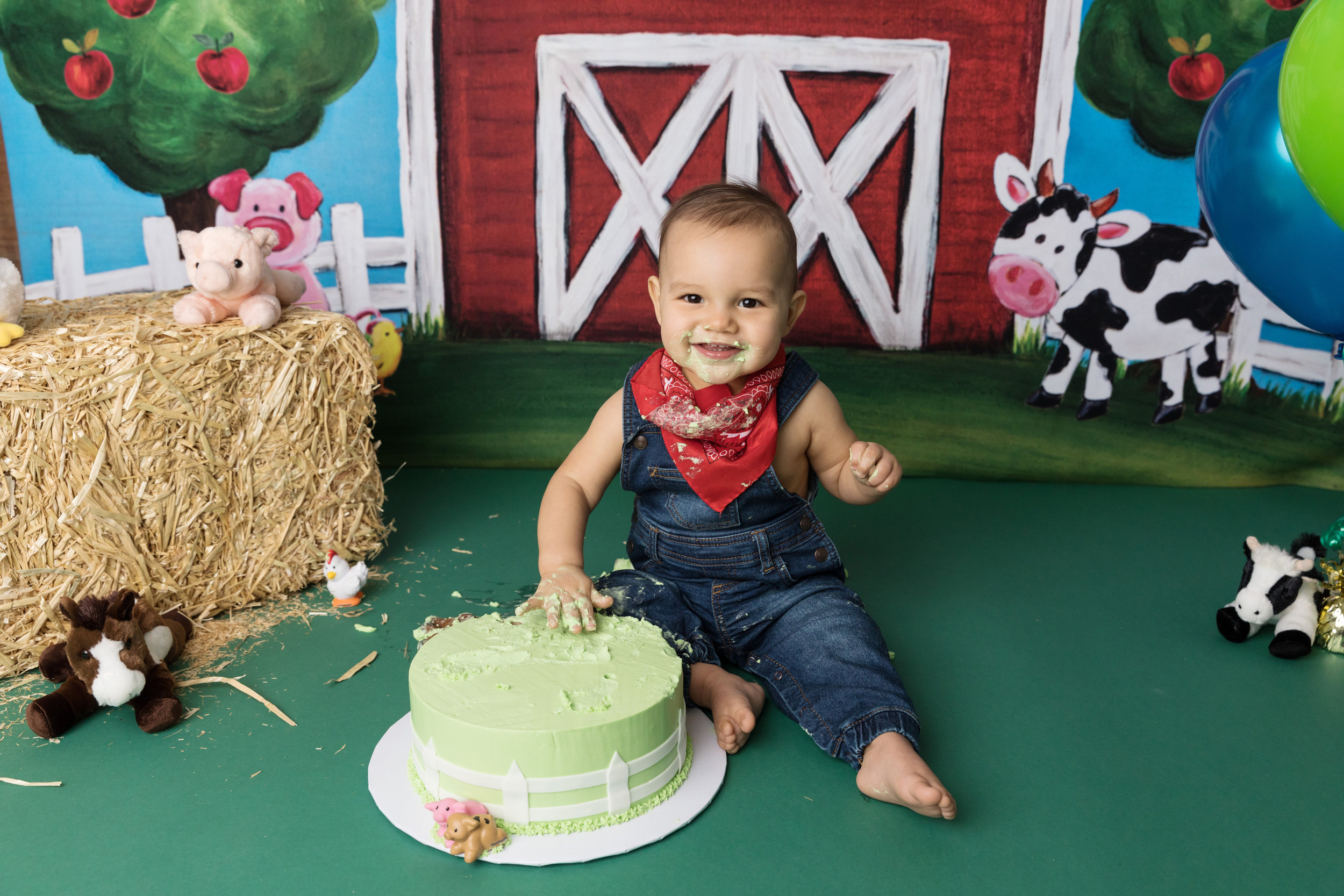 Farm theme cake smash with barn and farm animals and baby boy smashing birthday cake.