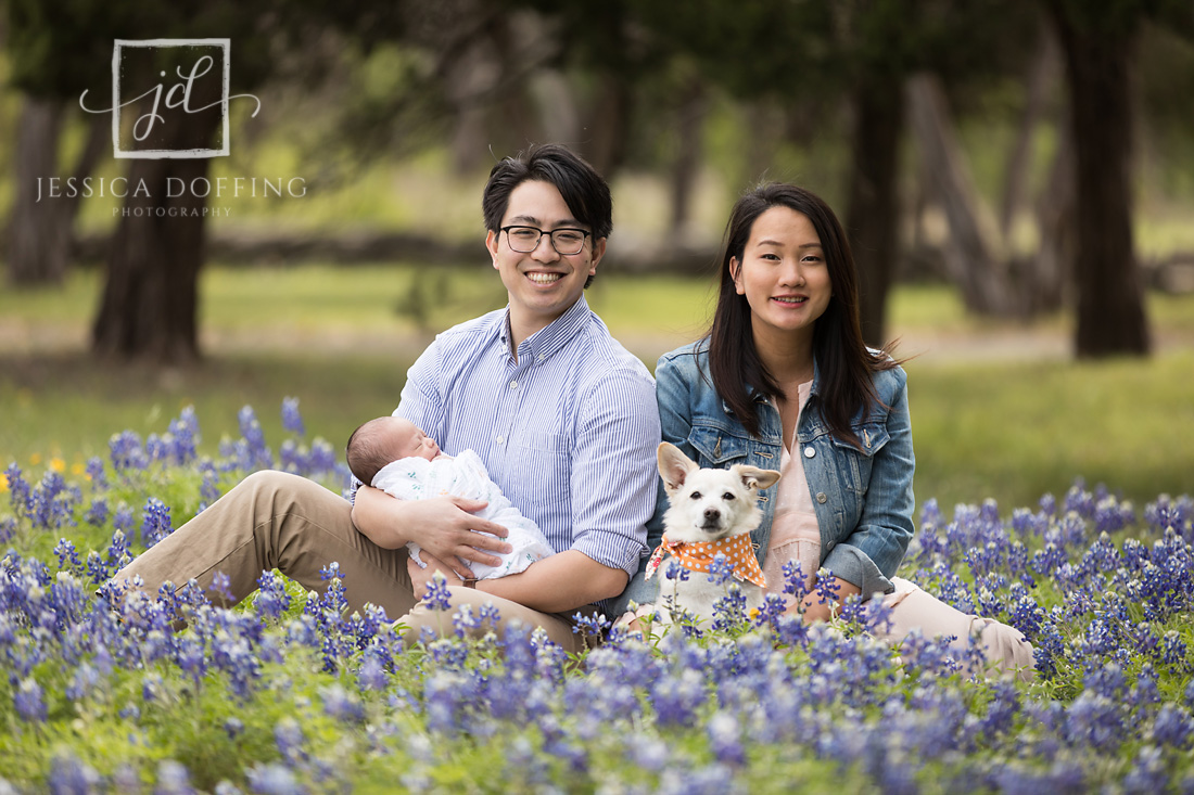 family newborn dog bluebonnets